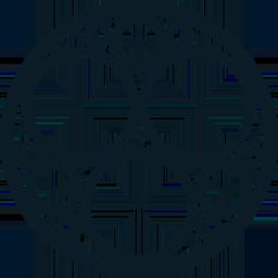 SONM logo